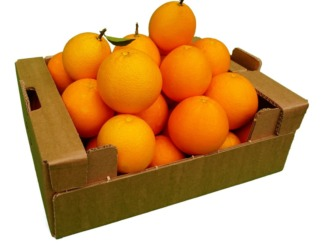 Demre Sıkmalık Portakal Kutusu