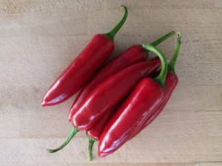Chilli Pepper Red (Jalapeno)